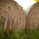 RWS Rifles leaning against hay bale