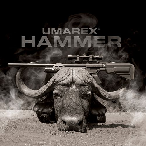 The Umarex Hammer with a Water Buffalo